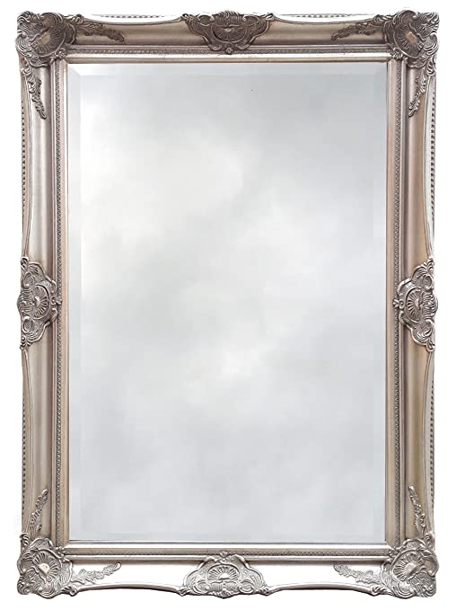 Artesano barocco Specchio con cornice, argento: Amazon.it: Casa e cucina