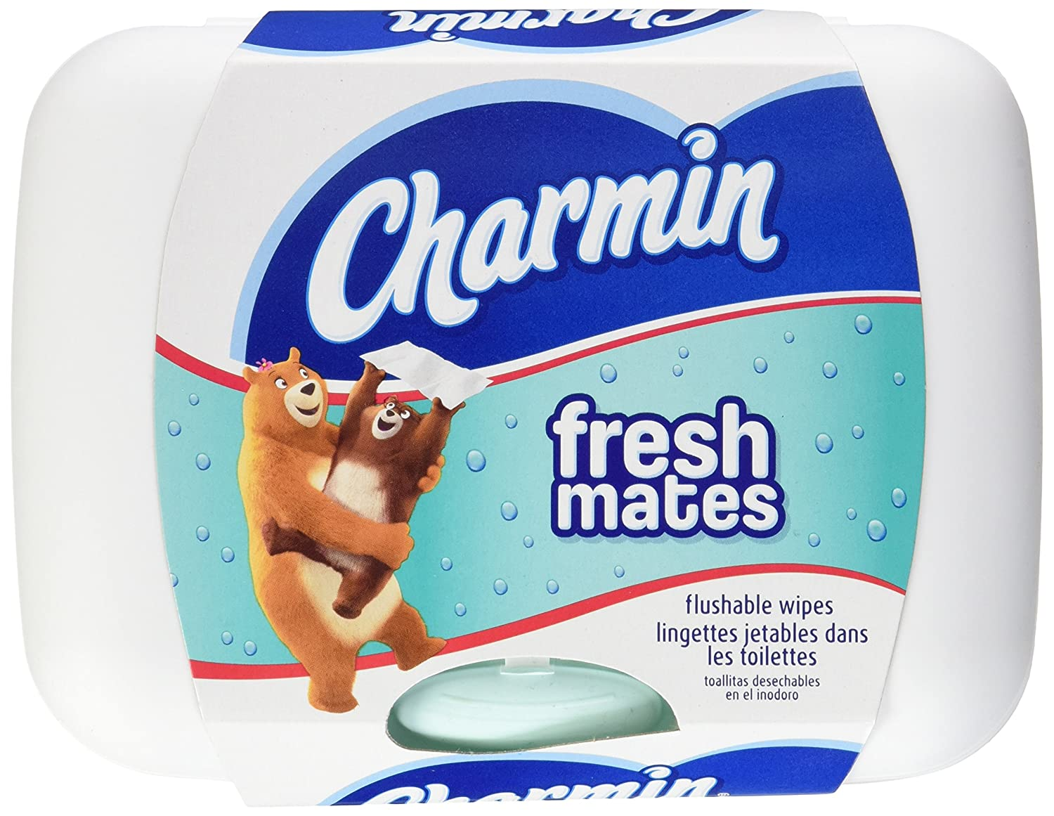 Charmin Freshmates Flushable Wipes 40 Count - with Refillable Tub by Charmin: Amazon.es: Salud y cuidado personal
