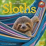 2019 Sloths Wall Calendar
