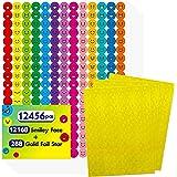 12456 Pcs Happy Smile Face Star Stickers Mega Bundle in 14 Colors and 10 Designs for Reward Behavior Chart (Each Measures 3/8
