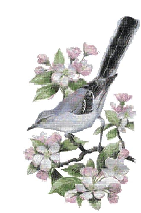 Arkansas State Bird And Flower Northern Mockingbird Apple Blossom Counted Cross Stitch Pattern