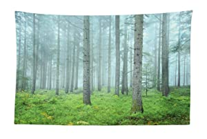 """Lunarable Forest Tapestry, Foggy Woodland Mystic Trees Foliage Autumn Morning Tranquil Landscape, Fabric Wall Hanging Decor for Bedroom Living Room Dorm, 45"""" X 30"""", Fern Green"""