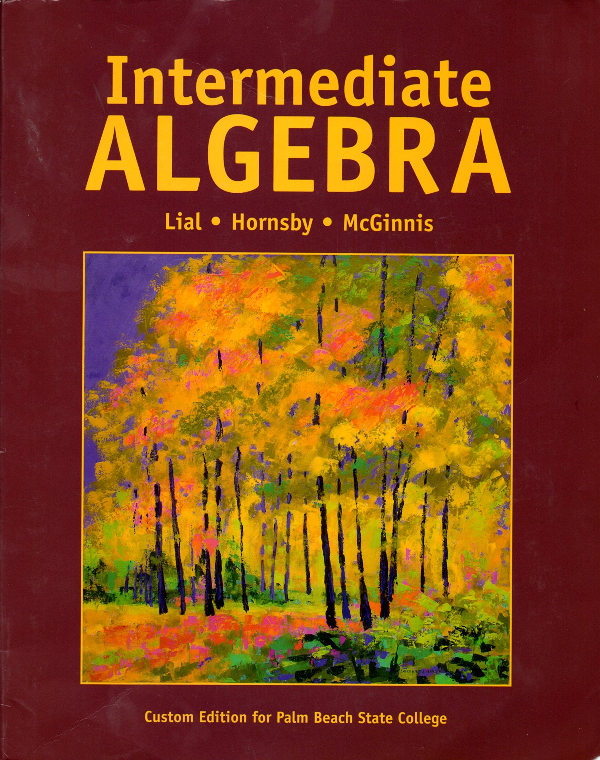 Intermediate algebra custom edition for palm beach state college intermediate algebra custom edition for palm beach state college hornsdy mcginnis lial 9781269350198 amazon books fandeluxe Image collections