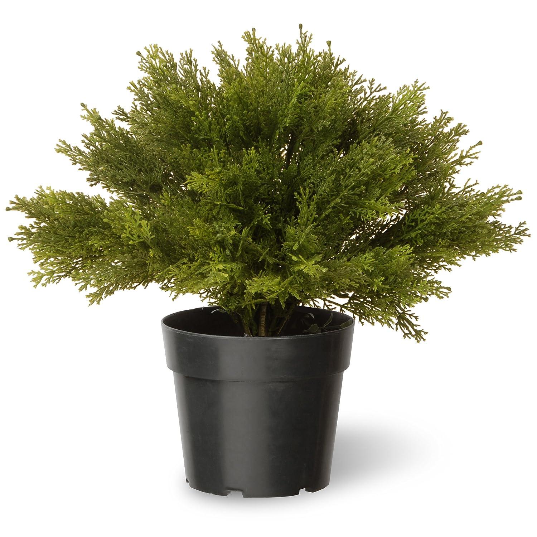 National Tree 15 Inch Globe Juniper in Green Pot (LCB4-15-1) National Tree - Drop Ship