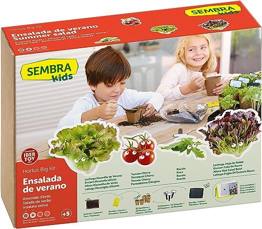 SEMBRA - juego educativo, Kit huerto Ensalada de verano: Amazon.es ...