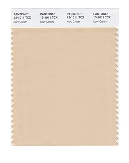 Famous PANTONE SMART 13-1011X Color Swatch Card, Ivory Cream - Wall Decor  OV33