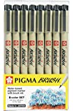 Sakura Pigma Micron pen, 8 colour brush tip calligraphy set for beginners, Archival ink fineliner