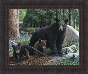 Home Cabin Décor New Discoveries by Kevin Daniel 20x24 Black Bear Mama Cubs Framed Art Print Picture
