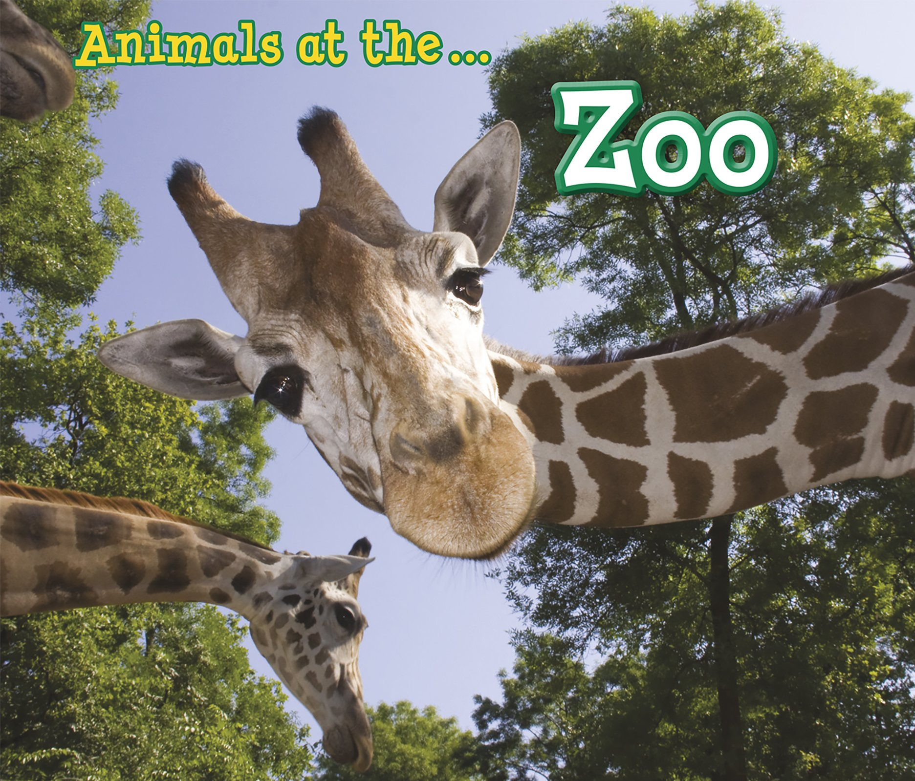 Read Online Animals I Can See Pack A of 4 (Acorn: Animals I Can See) PDF