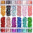 Warmfits Holographic Chunky Glitter 12 Colors Total 120g Face Body Eye Hair Nail Festival Chunky Holographic Glitter Differen