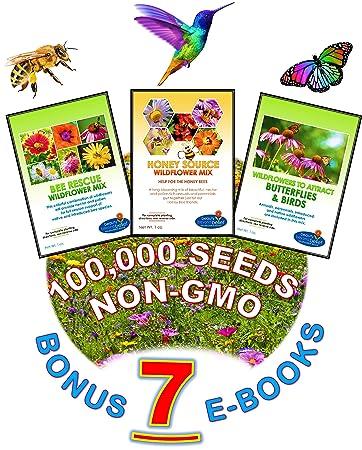 Amazoncom Wildflower Seeds Bulk 7 BONUS Gardening eBooks
