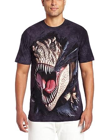 Tee shirt enfant Dino - T-Rex Tearing  Amazon.fr  Vêtements et accessoires 7b00774468e