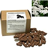 Amazon com : 20 Prairie Milkweed Seed Bombs - Bulk Seed