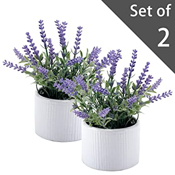 Amazon.com: Small Artificial Lavender Plant, Faux Flowers in White ... | Small Lavender Plant