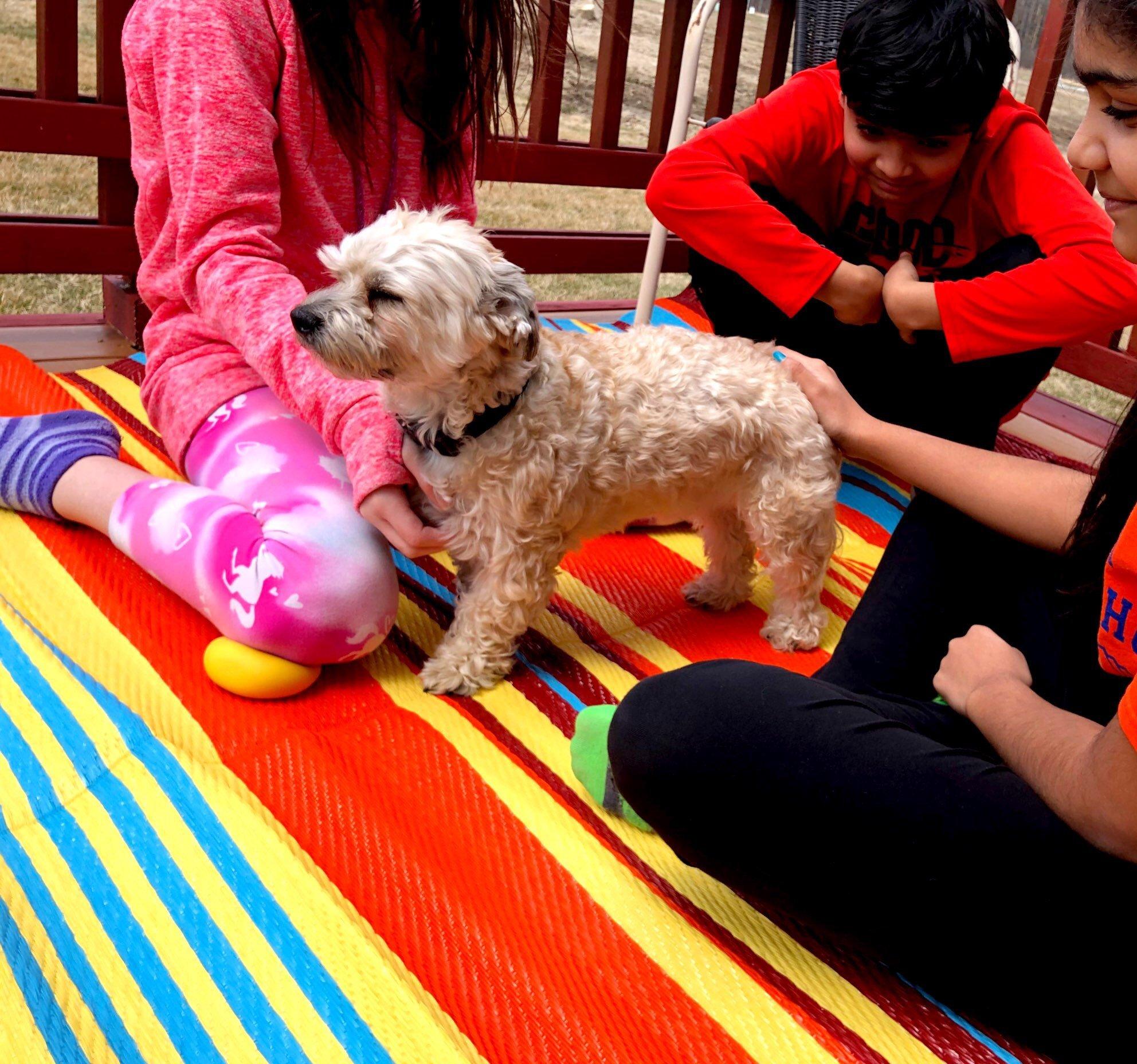 BalajeesUSA 6'x9' Reversible Outdoor rug patio camping beach tent rv mat rug 20270