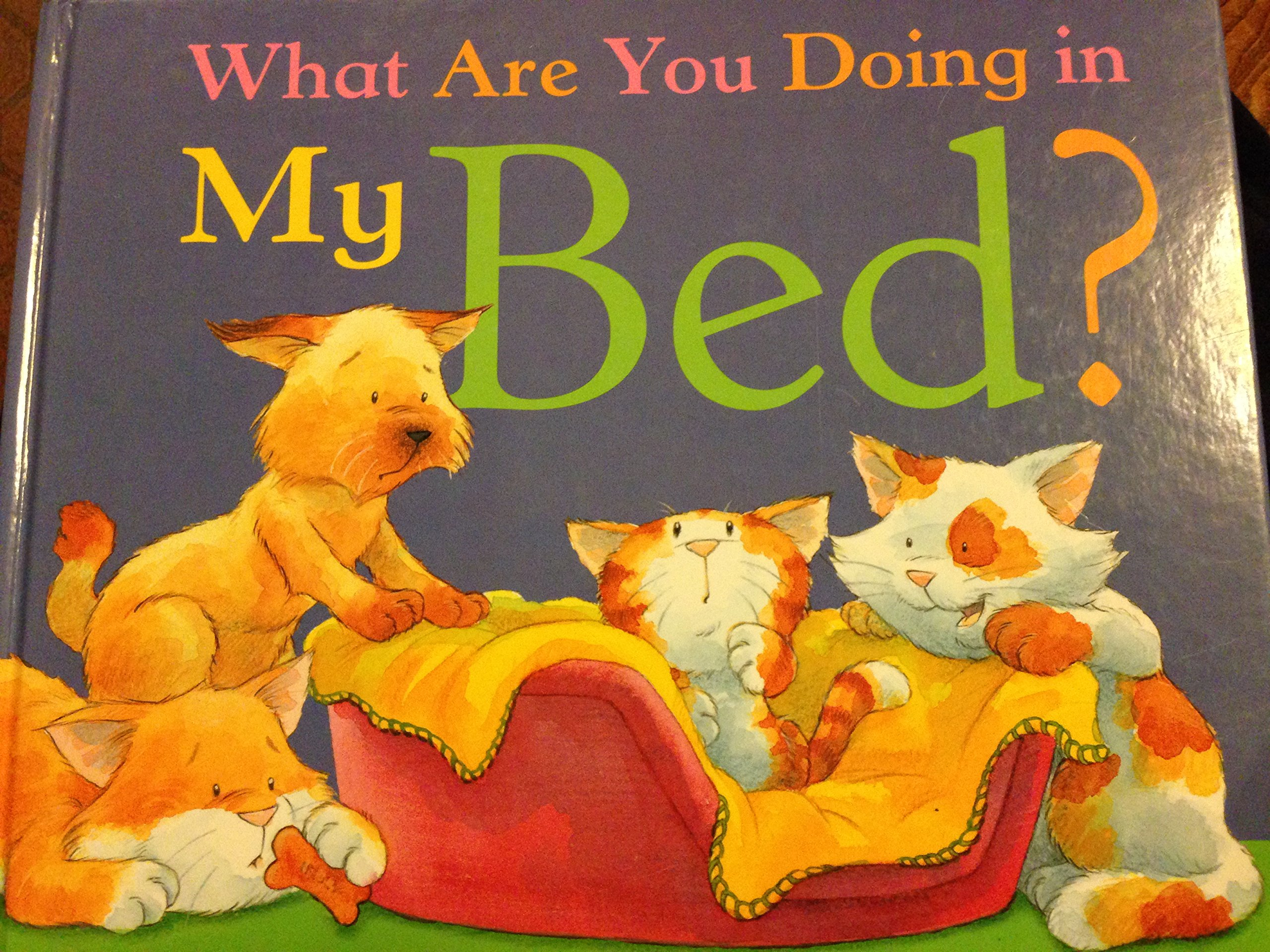 Download What Are You Doing in My Bed? PDF