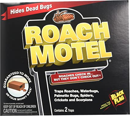 Amazon.com : ... (6 Pack) Black Flag Roach Motel Insect Trap : Garden &  Outdoor