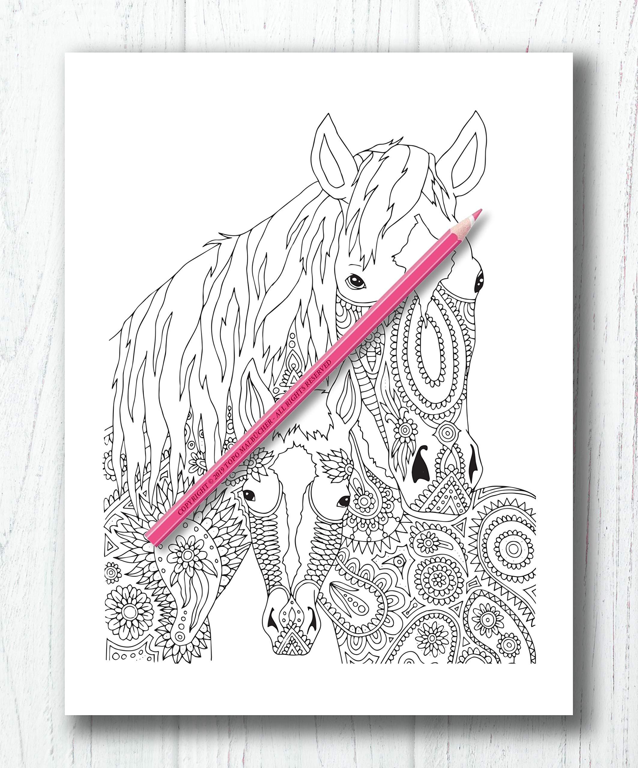 Pferde Malbuch Malbuch Fur Erwachsene Mit Traumhaften Pferdemotiven Bonus Mehr Als 60 Kostenlose Malvorlagen Zum Ausmalen Pdf Zum Ausdrucken Amazon De Malbucher Topo Bucher