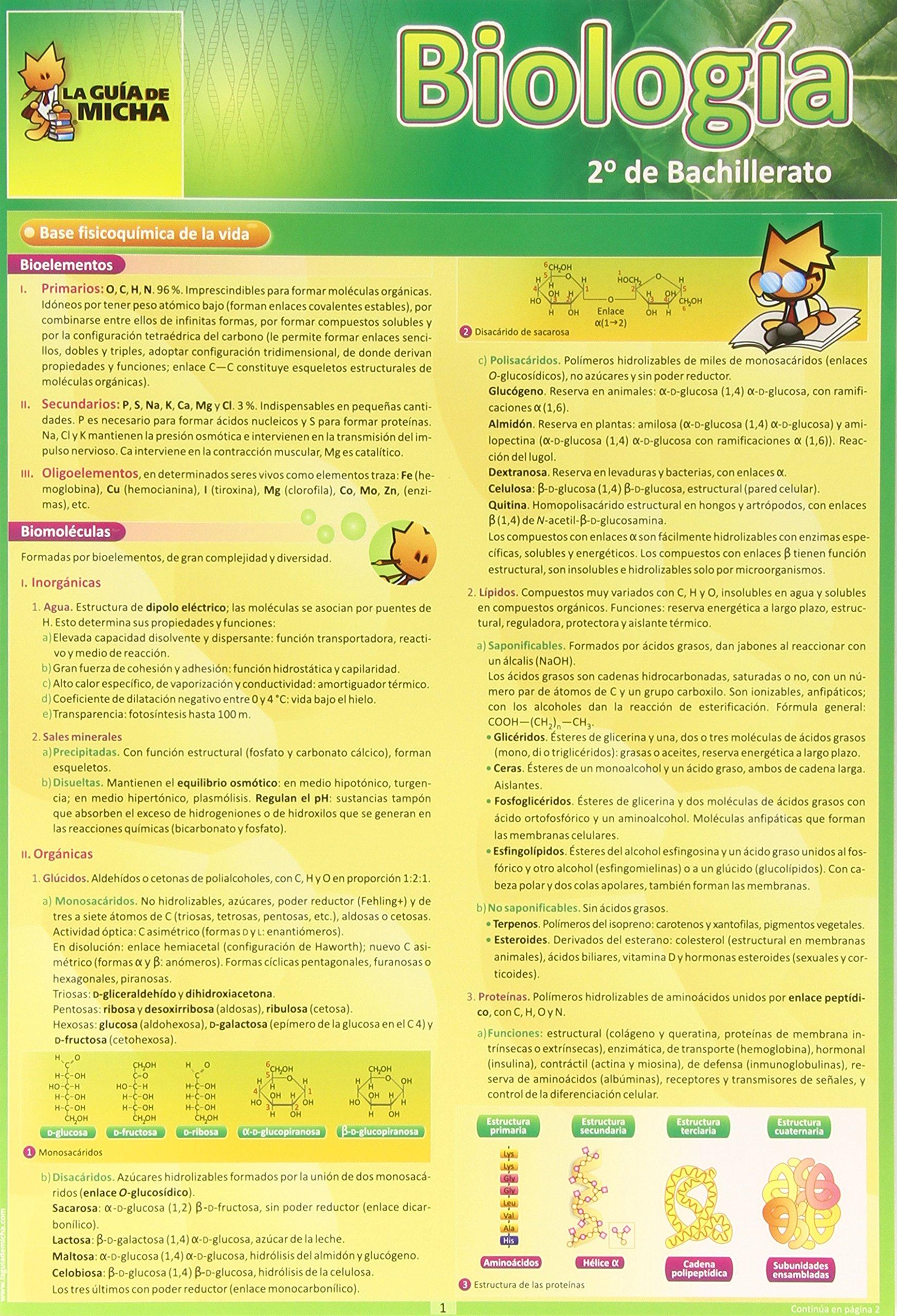 La Guía de Micha: Biología 2º de Bachillerato Guia De Micha - 9788493664008: Amazon.es: María del Carmen Pedrajas Sánchez: Libros