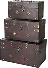 SLPR Decorative Wooden Chest  sc 1 st  Amazon.com & Storage Trunks | Amazon.com