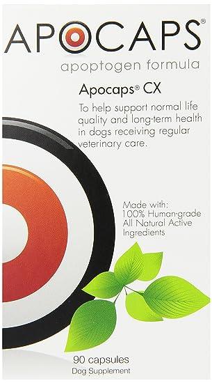 Apocaps | EverPup Cx Apoptogen Formula para perros (90 cápsulas ...