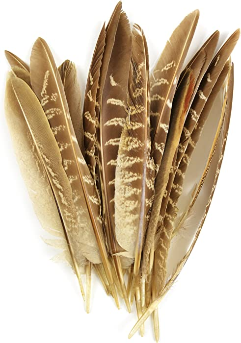 The Best Black Quill Feathers For Decor