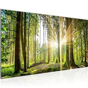 Amazon.de: Bilder Wald Landschaft Wandbild Vlies - Leinwand Bild XXL ...