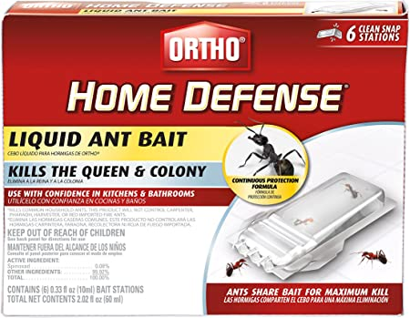 Amazon.com: Ortho – 0464812 Home Defense líquido Ant Bait ...
