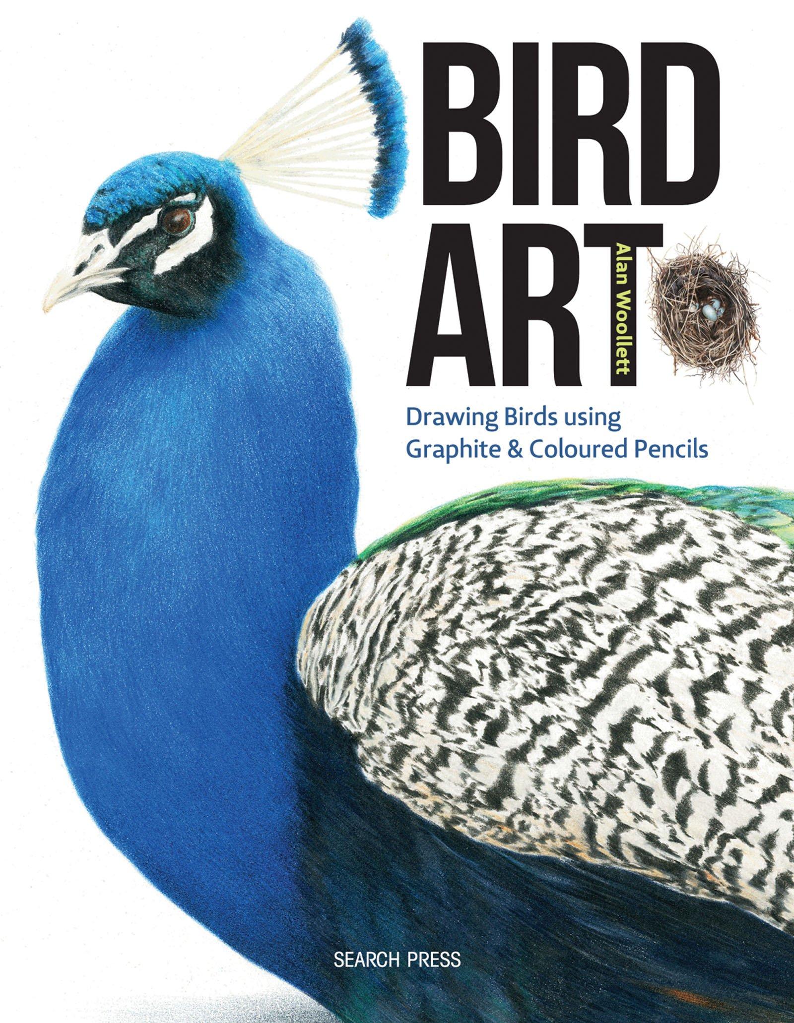 Bird Art Graphite Coloured Pencils product image