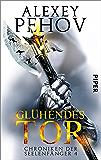 Glühendes Tor: Chroniken der Seelenfänger 4