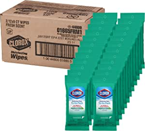 Clorox Disinfecting Wipes- To Go Fresh Scent, 9 count