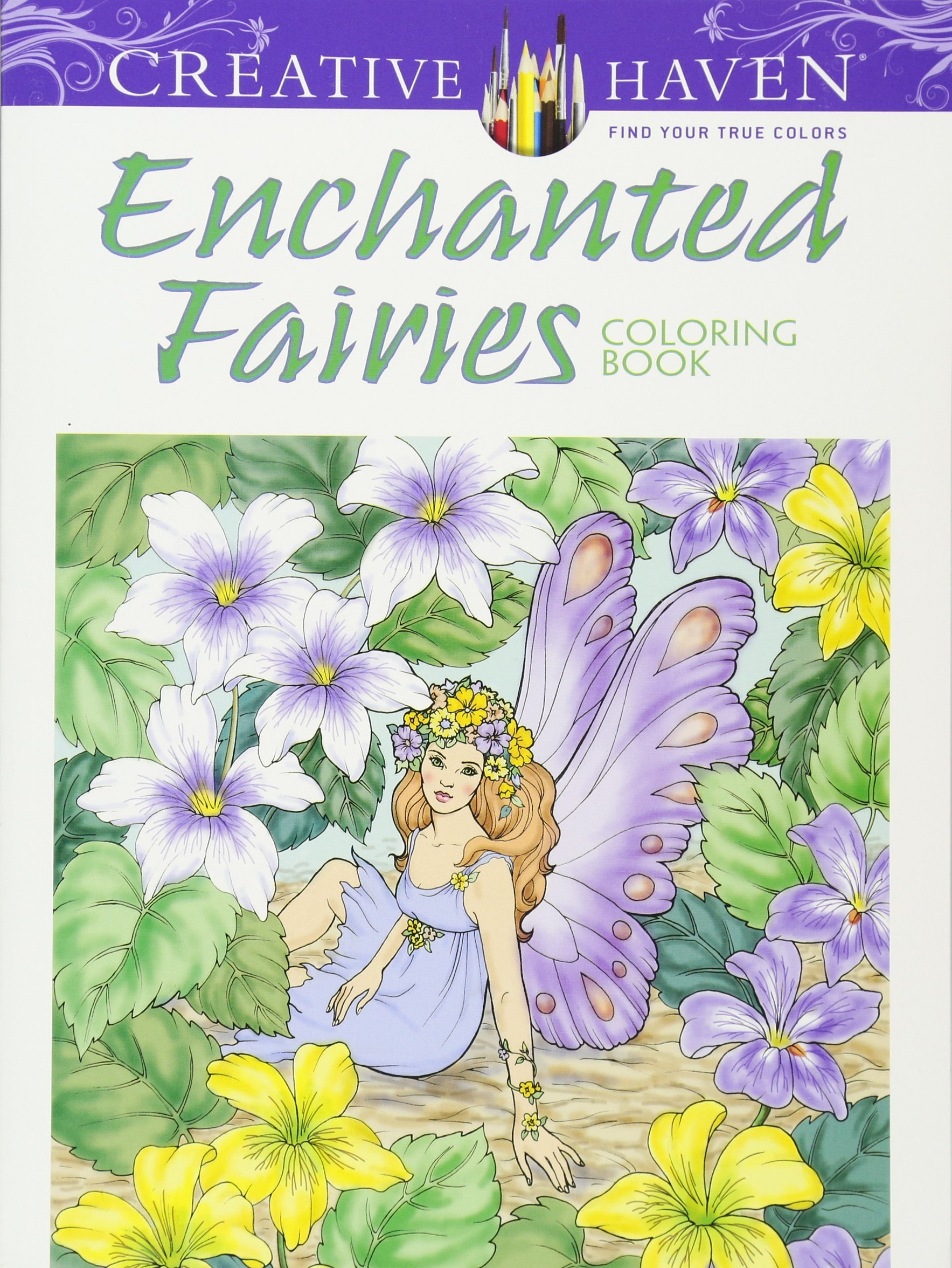 Creative Haven Enchanted Fairies Coloring product image
