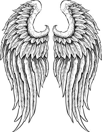 amazon com detailed angel wings with feathers black white vinyl