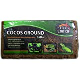 Terra Exotica 10 x Cocos Ground Humusziegel ca. 650 g - fein ca. 90 Liter Substrat