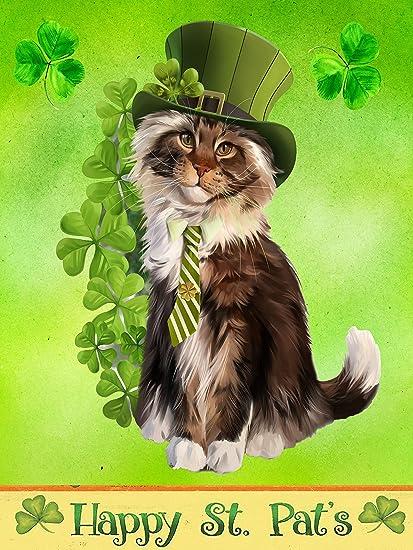 Amazon Com Wamika Happy St Patrick S Day Shamrock Funny Cat Yard