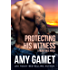 Protecting his Witness: A HERO Force Novel (Shattered SEALs Book 1)