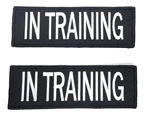 Small, XSmallEmotional Support Dog Vest. Custom Embroidered to say what you  need, Service