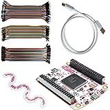 Great Scott Gadgets GreatFET One Bundle - Hi-Speed USB Peripheral, Logic Analyzer, Debugger and Development Board. Open…