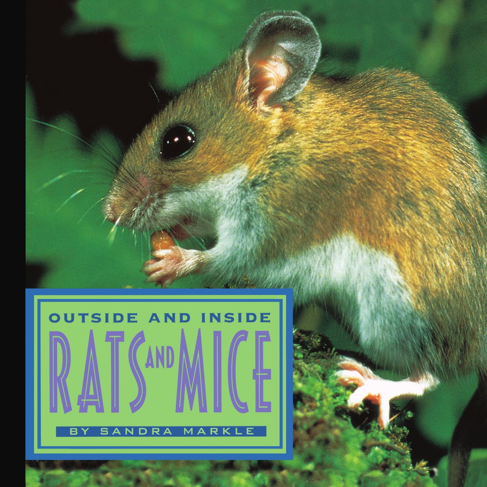 Outside and Inside Rats and Mice pdf