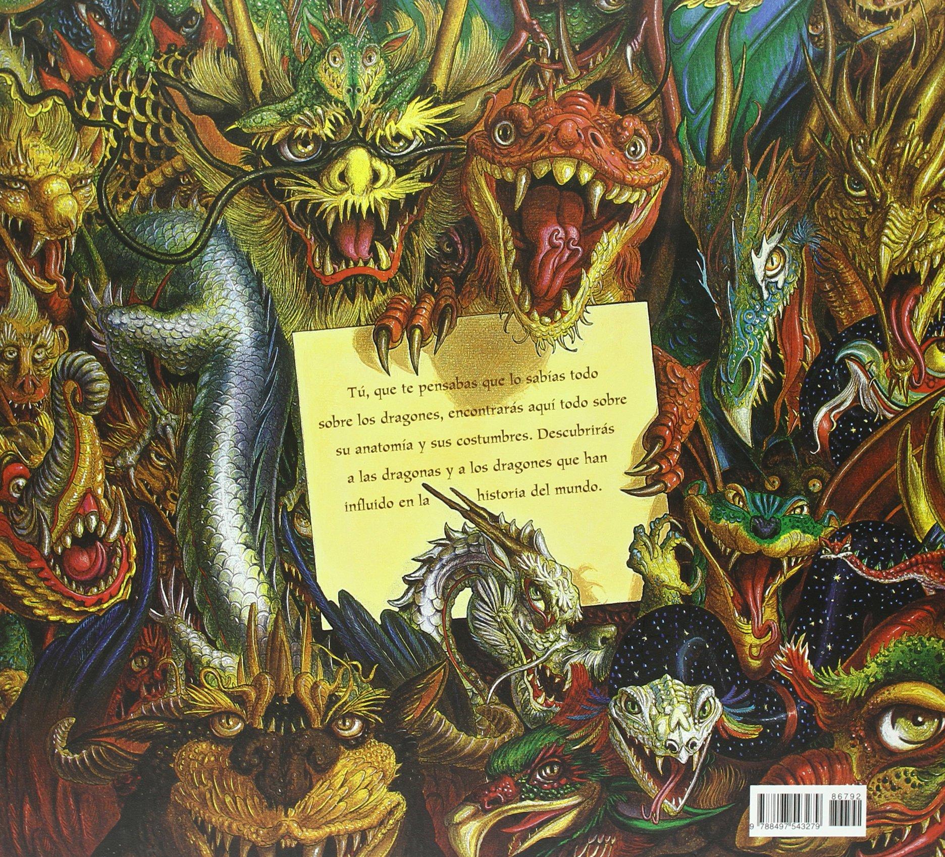Dragones cariñosos (Libros Ilustrados): Amazon.es: Sylvie Chausse ...