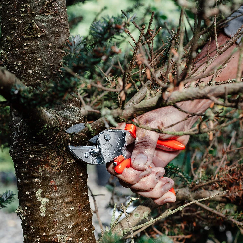 Loewe 1104 - Herramienta Manual de jardinería: Amazon.es: Jardín