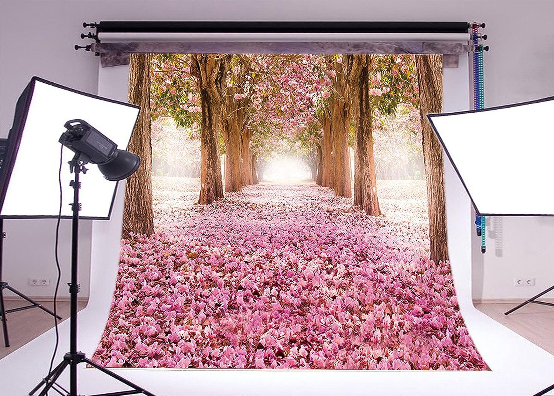LB – 10 401 x 10ft Cherry Cherry Blossoms Street Polyファブリックカスタマイズ背景CP写真プロップ写真背景14 – 401 B00LWMA95Q, 衛生ラボ:f34e0fc5 --- integralved.hu