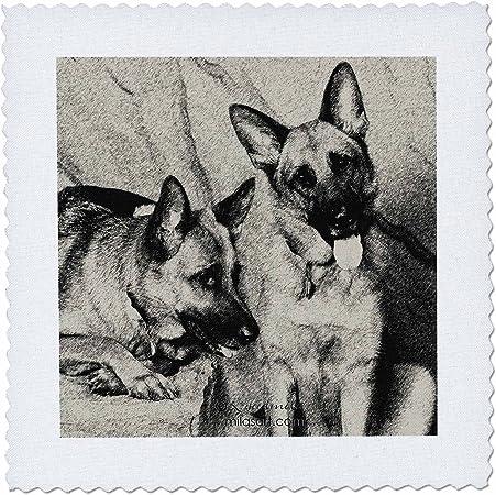 10 by 10-Inch 3dRose German Shepherd Square Quilt Sheet