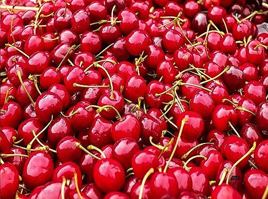 Amazon.com: Fresh Cherries – Tabla de cortar de cerezo rojo ...