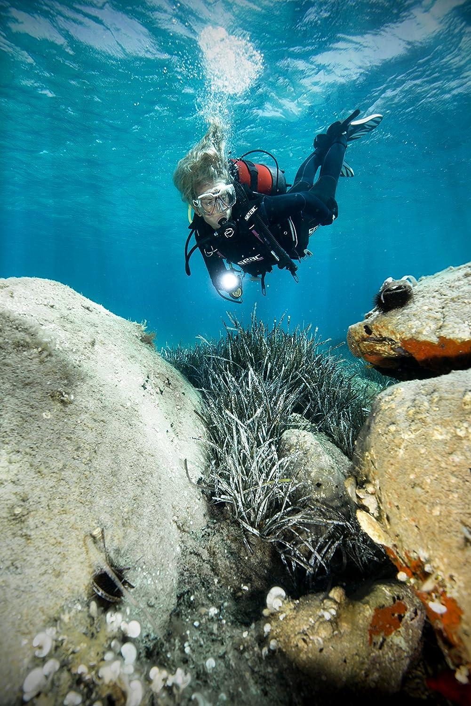 SEAC DX200 Scuba Diving DIN Regulator