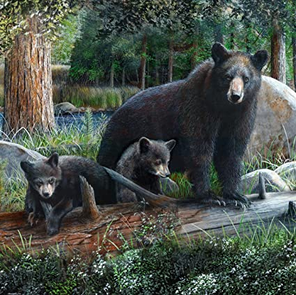 Image Unavailable Not Available For Color Marco Rustic Black Bear Cubs Shower Curtain