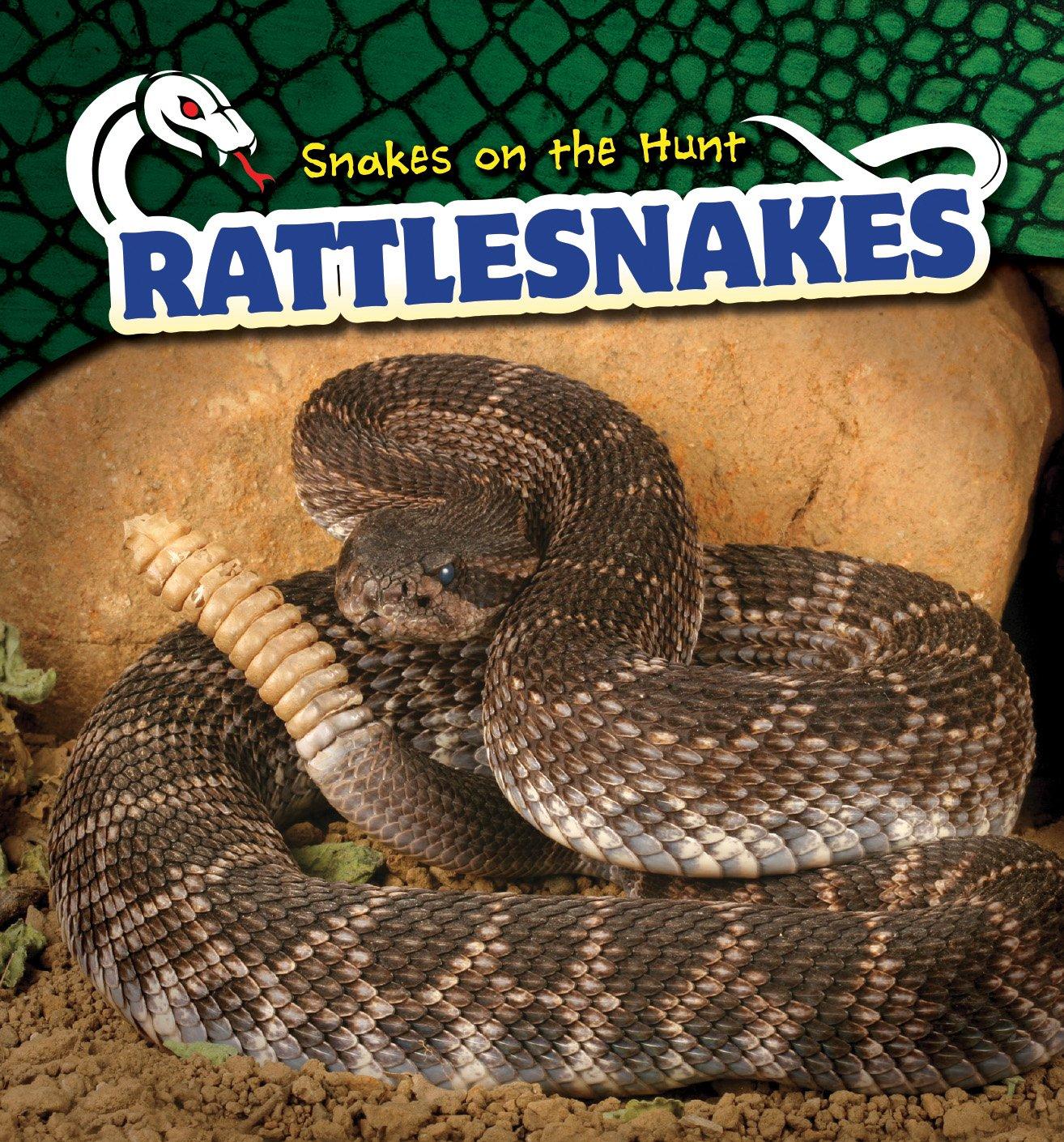 Download Rattlesnakes (Snakes on the Hunt) pdf epub