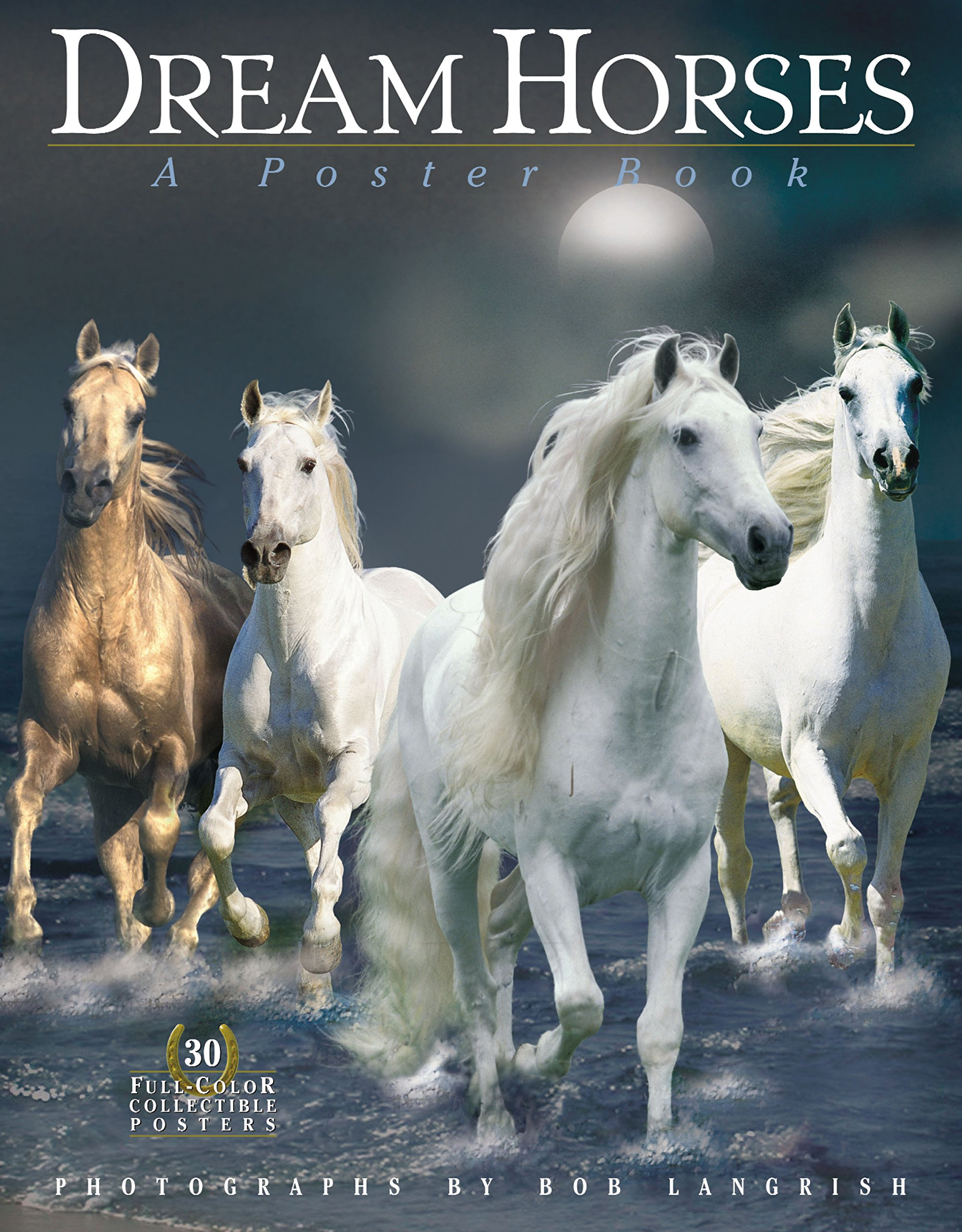 Dream Horses: A Poster Book