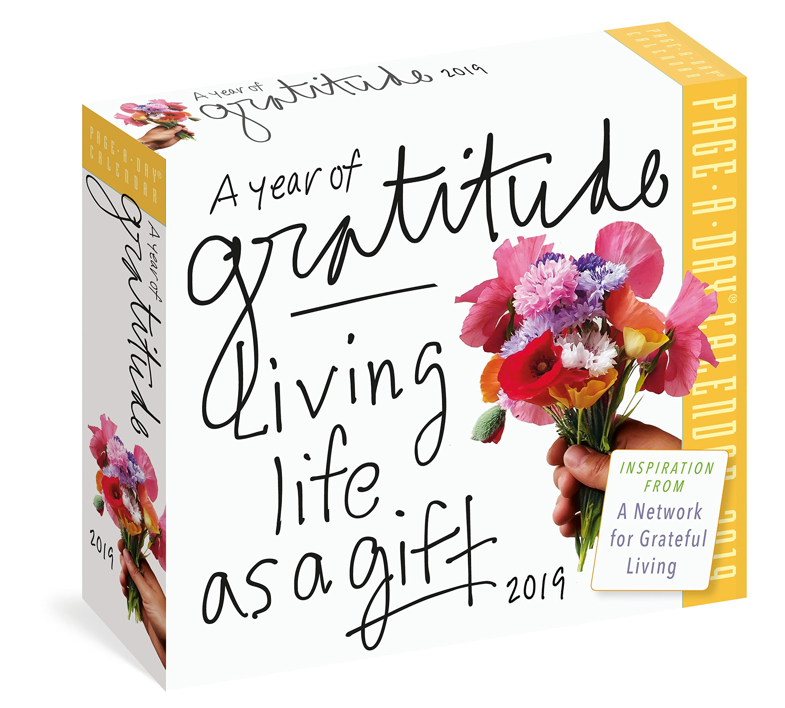 A Year of Gratitude Page-A-Day Calendar 2019: Living Life as a Gift PDF