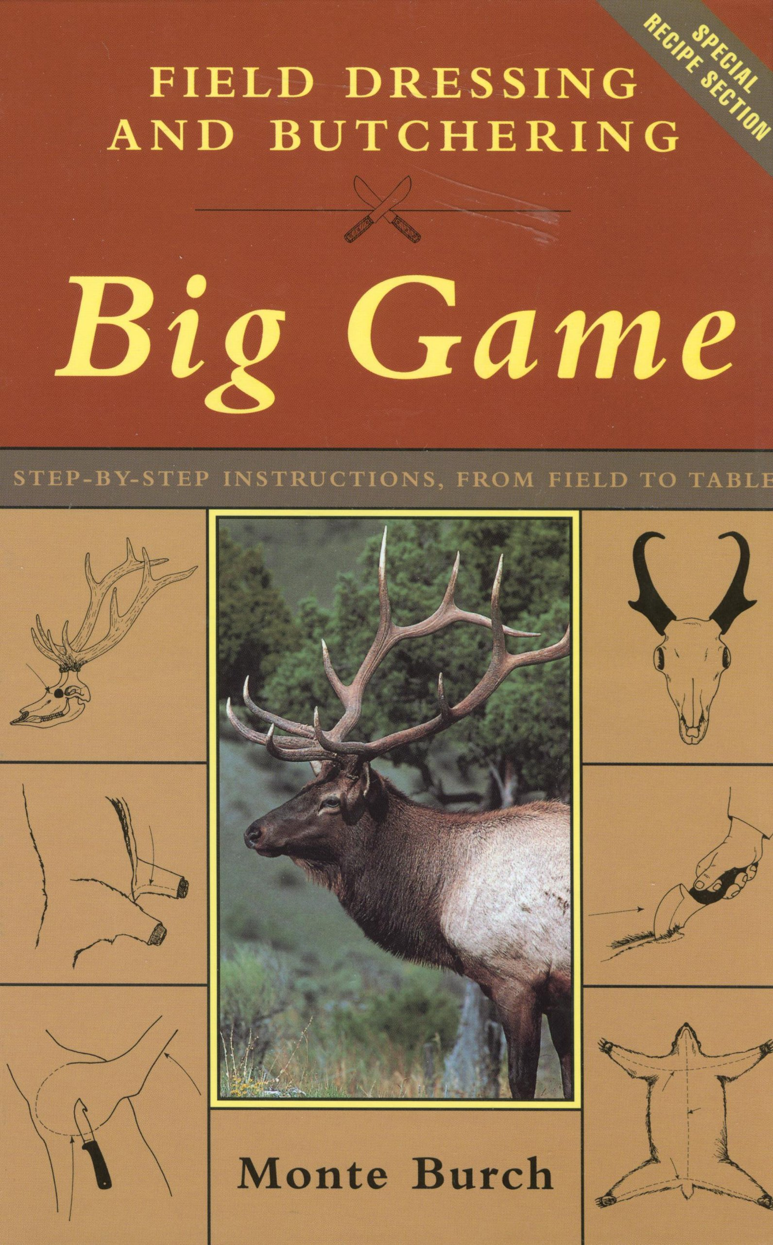 field dressing and butchering big game step by step instructions